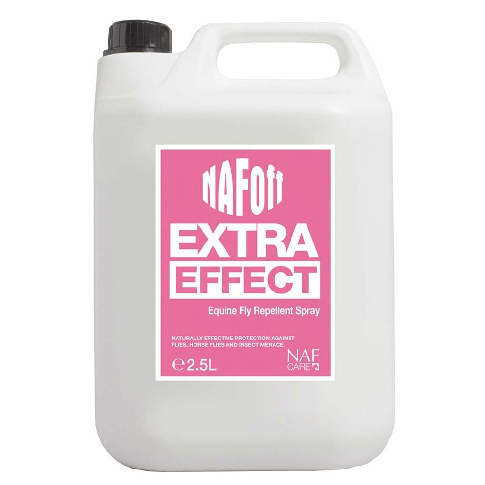 Natural Fly Repellent For Home Uk