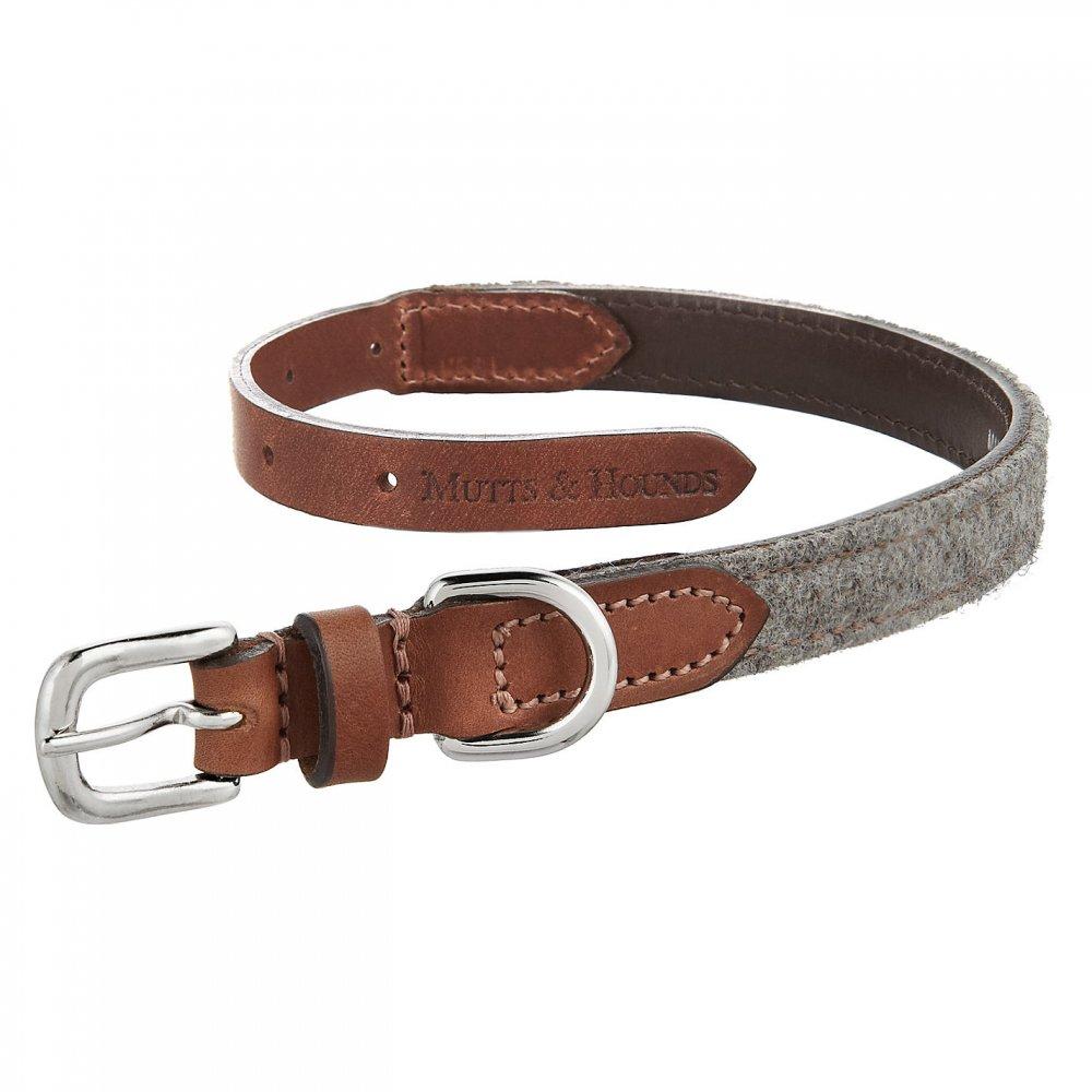 Rolled Ny On Dog Collar Uk