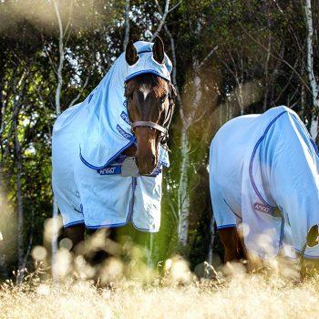 Two horses in Horseware fly rugs grazing in field