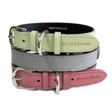 Mutts & Hounds Pastel Leather Dog Collar