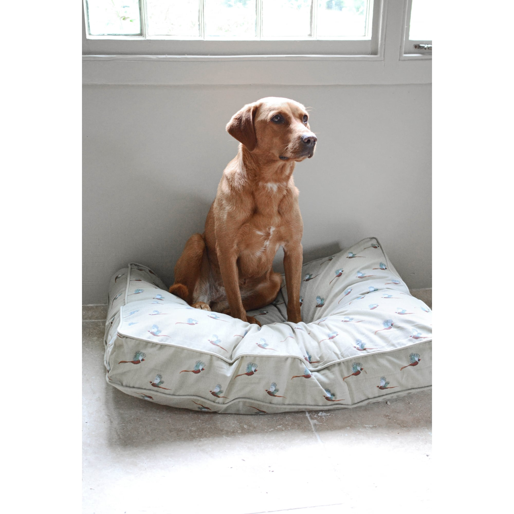 pet dog rectangle outdoor cover medium itm chevron removable indoor bed majestic