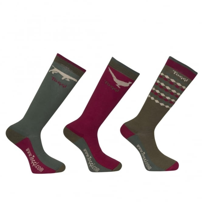 Toggi Southwick Mens Socks (3 Pack)